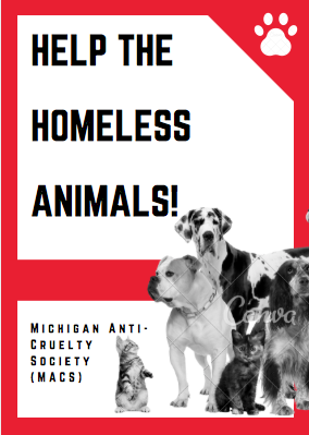 Help the Homeless Animals!