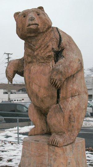 Maire Bear